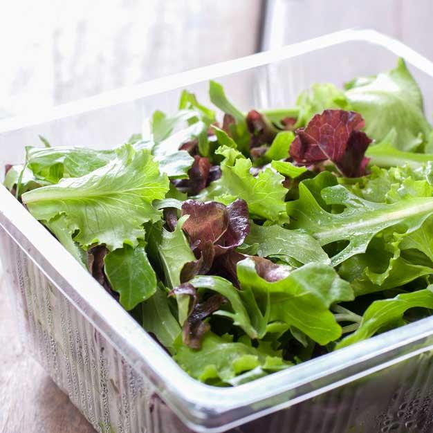 Fornitura frutta e verdura per ristoranti: insalata IV gamma
