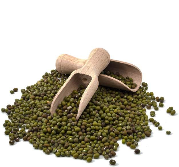 Fornitura legumi biologici per ristoranti