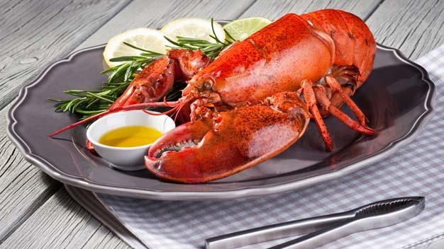 Fornitura pesce per ristoranti: astice